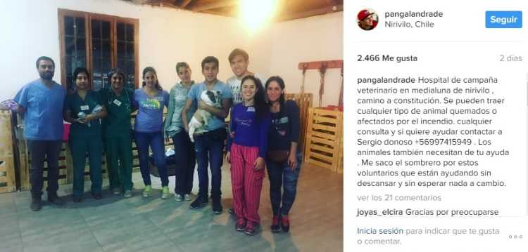 pangal andrade instagram